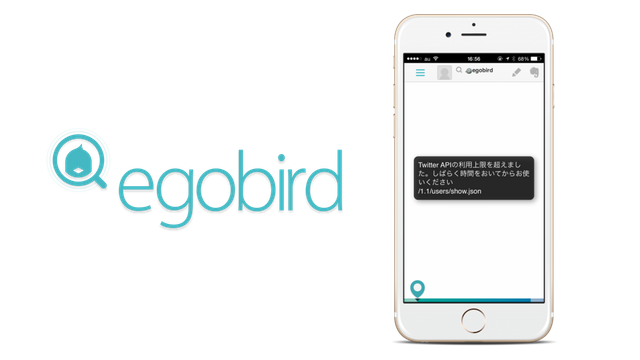 egobird_api_trouble_catch